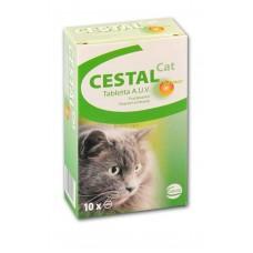 A.U.V. CESTAL CAT FEREGHAJTO 1X