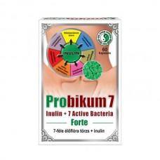 DR CHEN PROBIKUM 7 FORTE KAPSZULA 60x